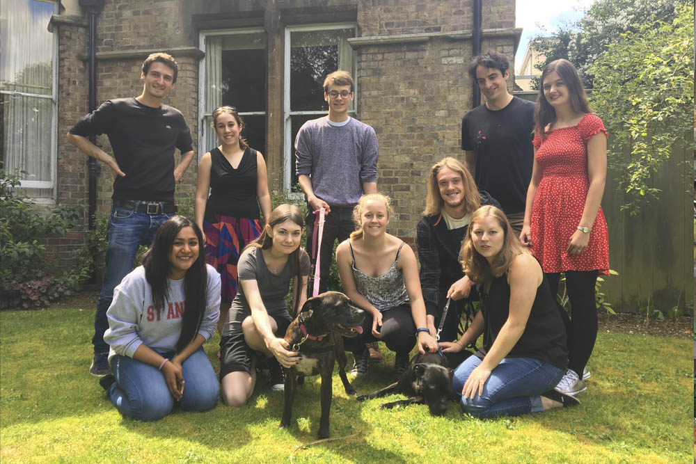 St.Annes College - Pet Therapy - Oxfordshire Animal Sanctuary